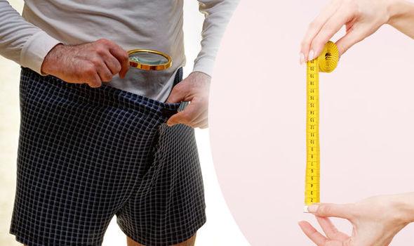 pênis quantos cm é considerado grande