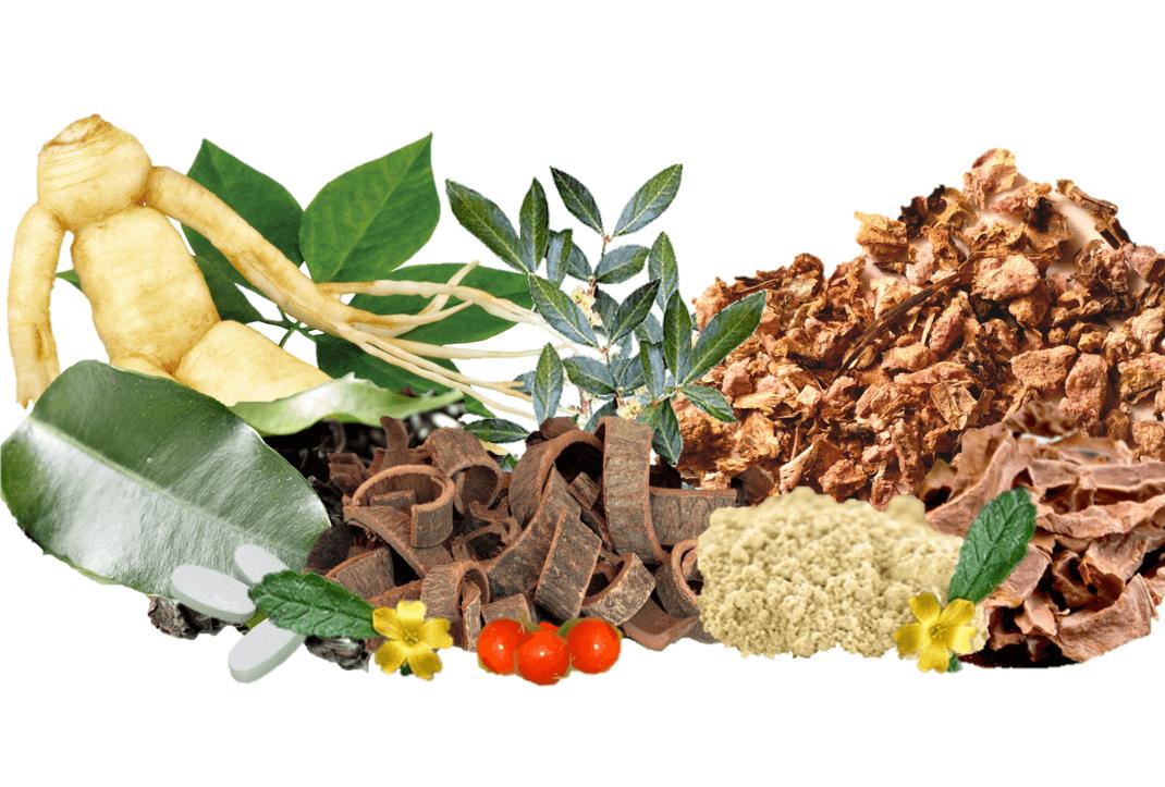 ervas que aumentam a testosterona